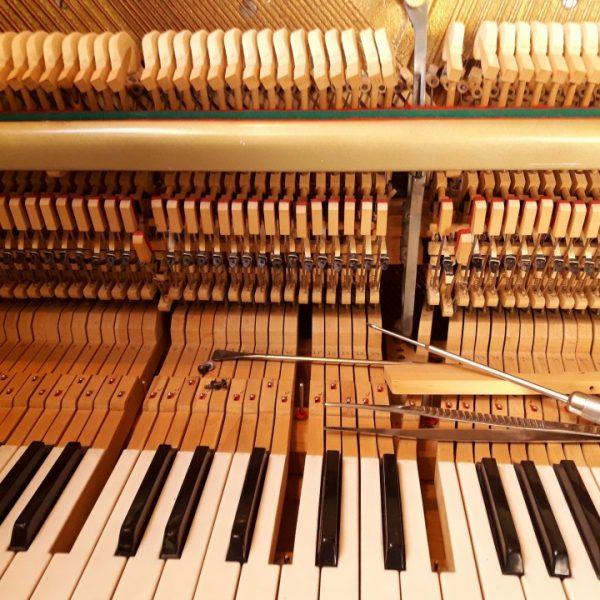 פסנתר הסיפורים הפנימי / למי את מקשיבה?